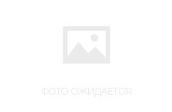 HP Deskjet D5563 с СНПЧ